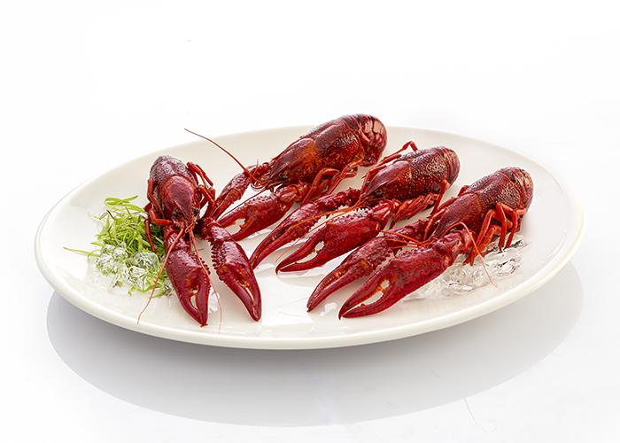 cangrejo-de-rio-cocido-2